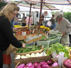 St. Helena's Farmers' Market Hands-OnCooking class and tour
